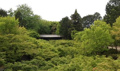 130501-2.jpg