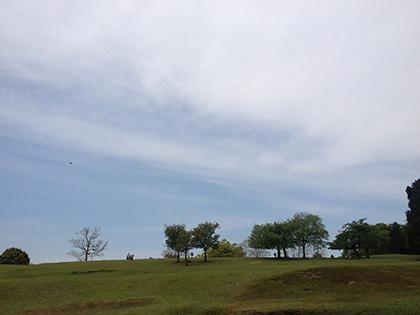 140509-3.jpg