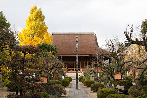 20141117-_ryufuku1.jpg