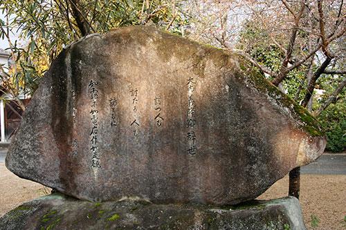 20141117-_ryufuku2.jpg