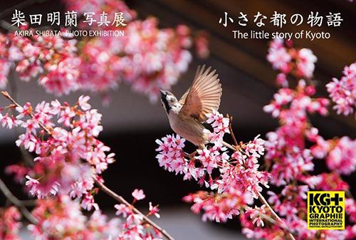 blog_180423-1.jpg