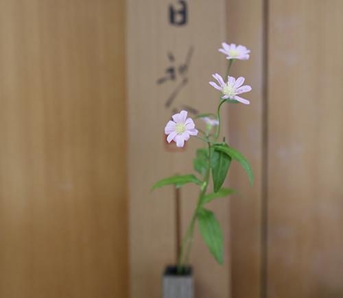 blog_AC_1672.jpg