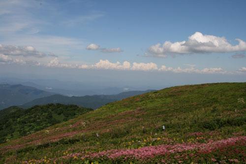 自然そのものの空・雲・草木