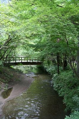 亀の井別荘付近にて