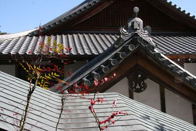 Ryutaku07.jpg