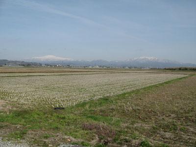 お達磨の桜から眺めた月山(左)と葉山