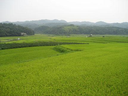 美しき国 日本