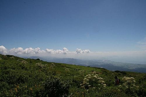 伊吹山頂 夏雲が広がる