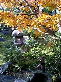 天龍寺の茶室、祥雲閣から見た庭