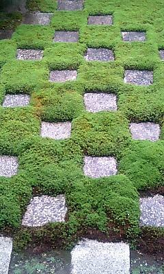 東福寺方丈_市松模様の庭